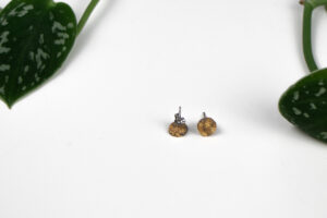 ohrstecker Rund transparent gold